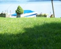 grass-roots-Jesse-07-0451