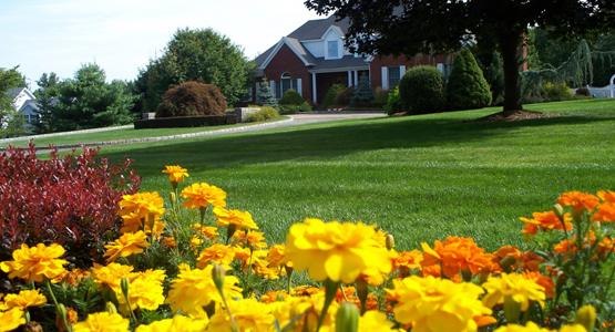 A Little Bit About Grass Roots, Inc. - Landscaping New Fairfield CT Grass Roots Inc