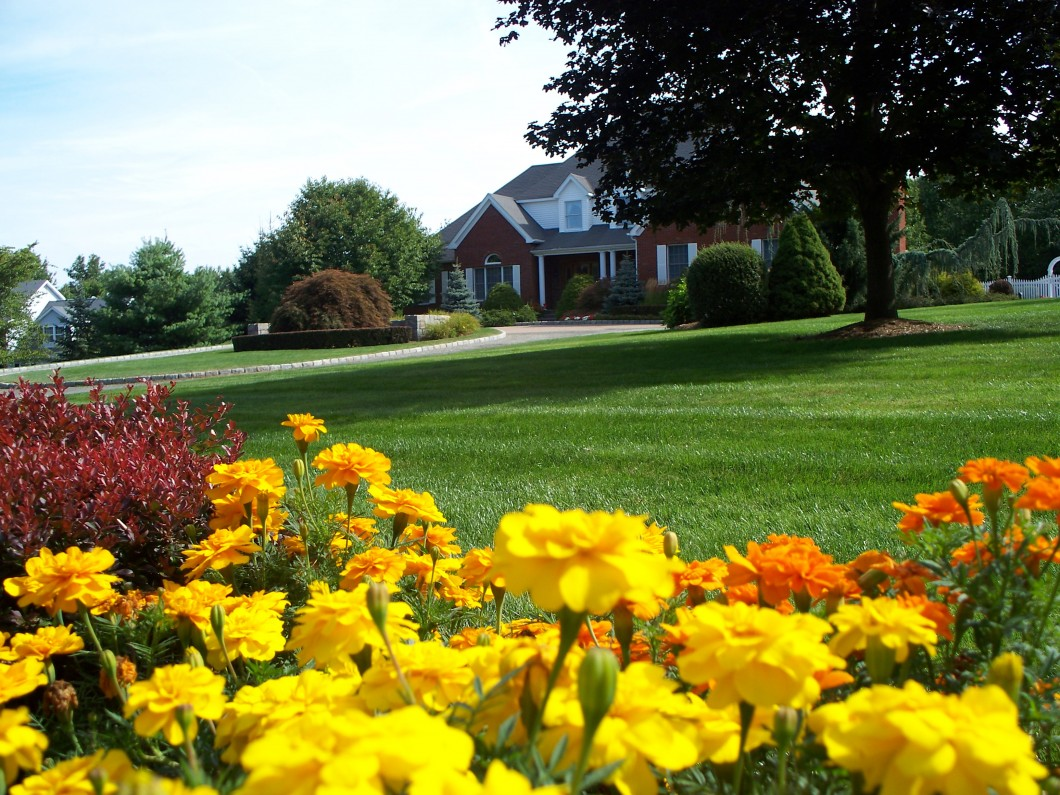 Landscaping Contractors – Danbury CT - Landscaping Contractors Danbury CT Grass Roots Inc.