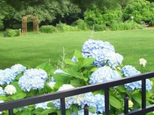 landscaping contractor danbury ct